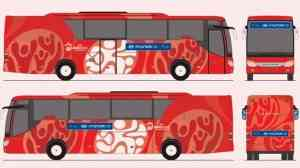 Autobuses para todos 3