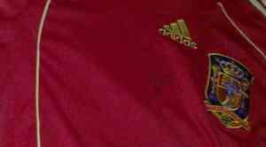 firma Fernando Torres, camiseta selección española