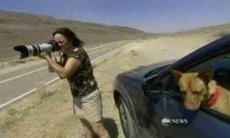 Ser fotógrafo espía requiere paciencia y suerte