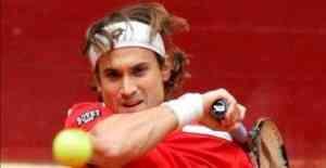 David Ferrer pone el punto definitivo para España