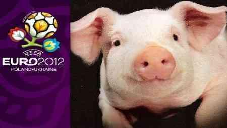 un cerdo el sustituto del pulpo paul para la eurocopa
