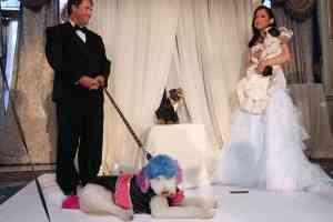 La boda de perros más cara del mundo