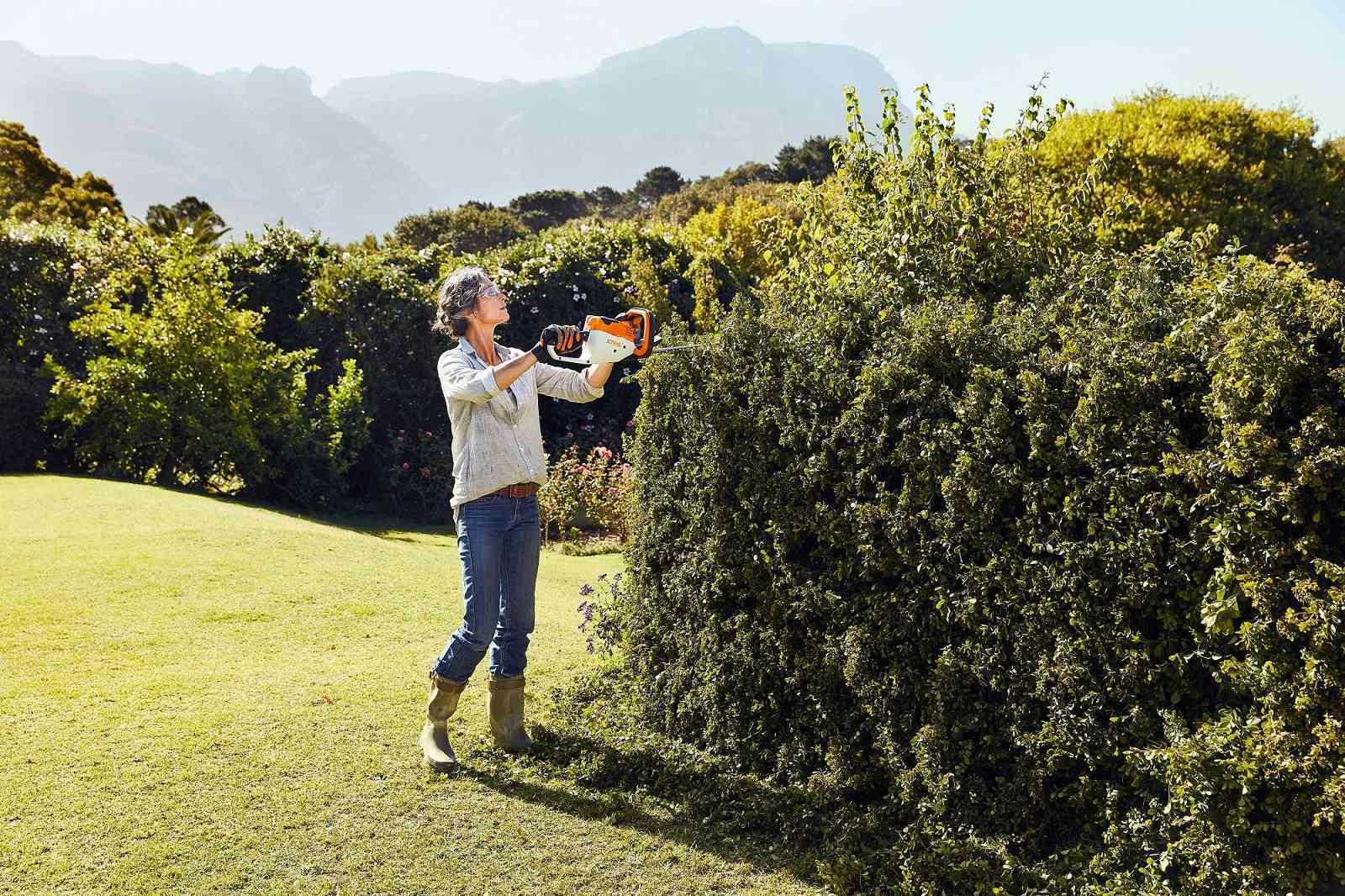 Los mejores cuidados para tu jardín este verano 16