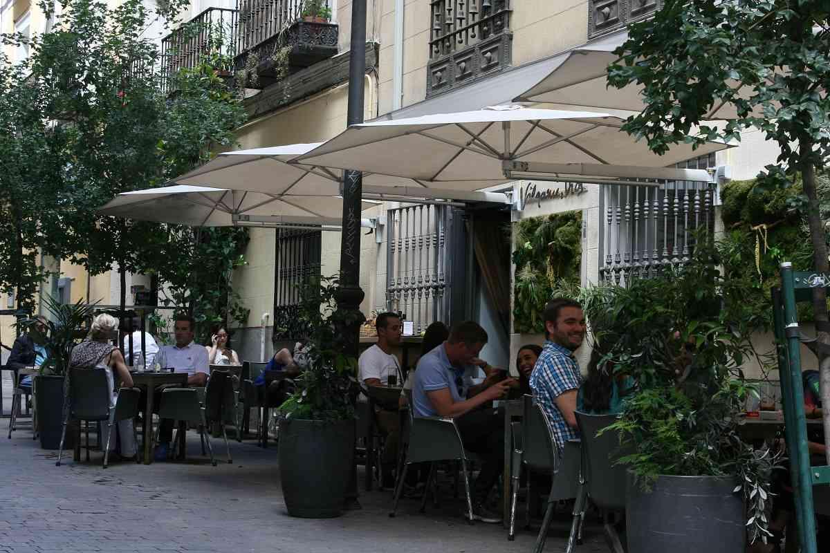 Premios Gato Terrazas Madrid para elegir la mejor terraza de la capital 52