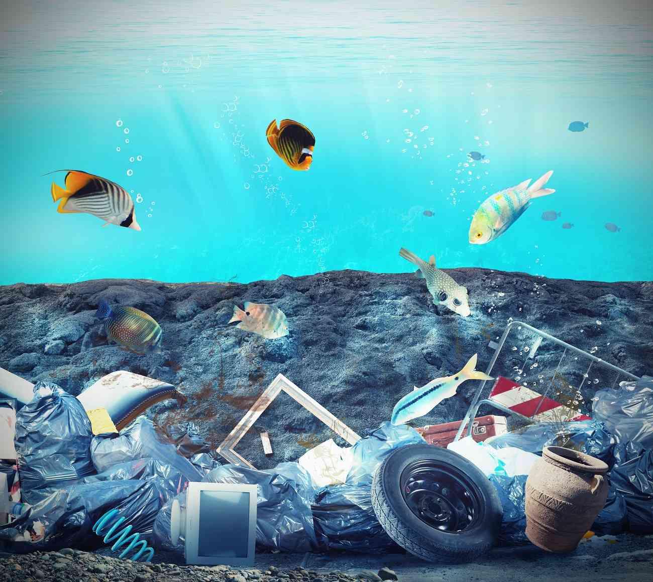 Estudiantes españoles crean una aplicación móvil para concienciar a los niños sobre el cuidado de los mares