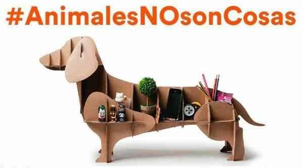 Animales no son cosas, la campaña que busca cambiar el Código Civil 2