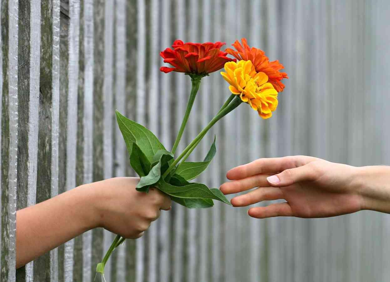 5 motivos por las que regalar flores a una mujer 3
