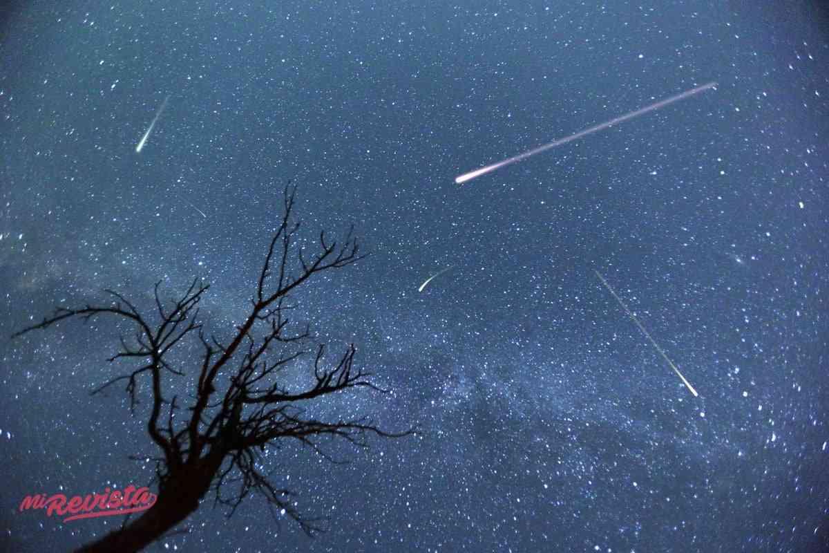 Guía de disfrute y seguridad para ver la lluvia de estrellas Perseidas