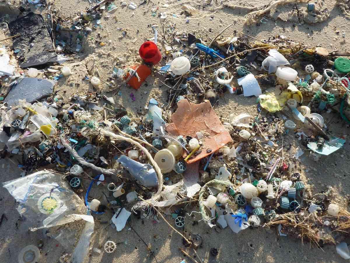 Fujitsu impulsa una iniciativa contra los residuos plásticos en los océanos