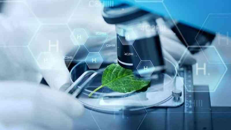 Hidrógeno verde: el combustible del futuro 3