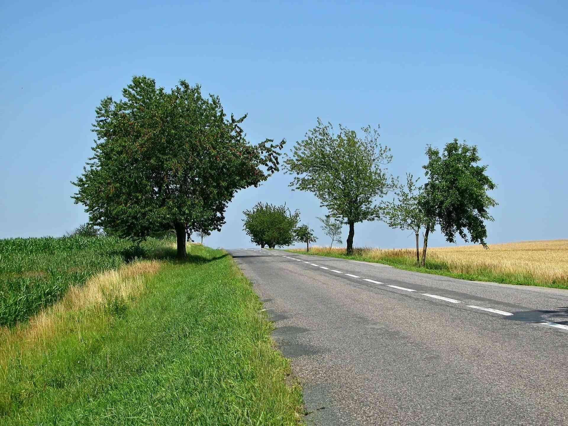 Consejos a la hora de conducir por carreteras secundarias 3